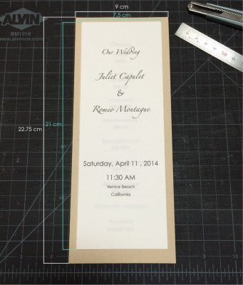[d.i.y.] tulle veiled wedding programs-2