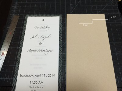[d.i.y.] tulle veiled wedding programs-5