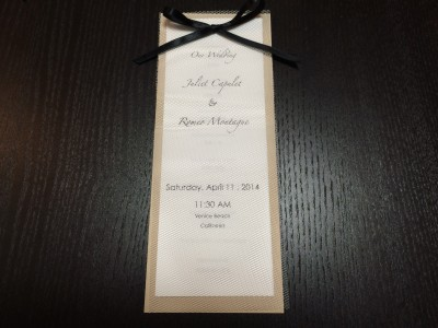 [d.i.y.] tulle veiled wedding programs-9